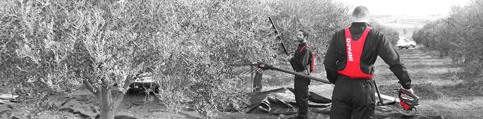 pw2 vibrador olivas Infaco sobitec peru