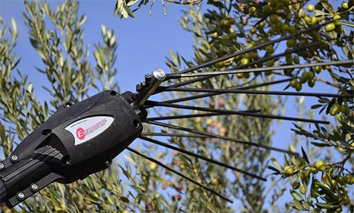 pw2 vibrador olivas vegetal Infaco sobitec peru