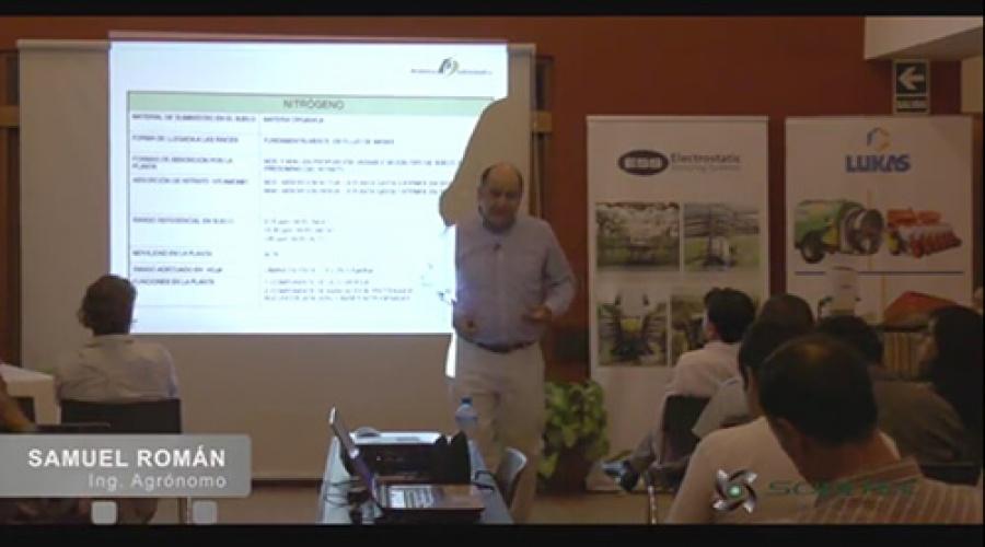 Importancia del nitrógeno (N) en la producción de uva de mesa de calidad