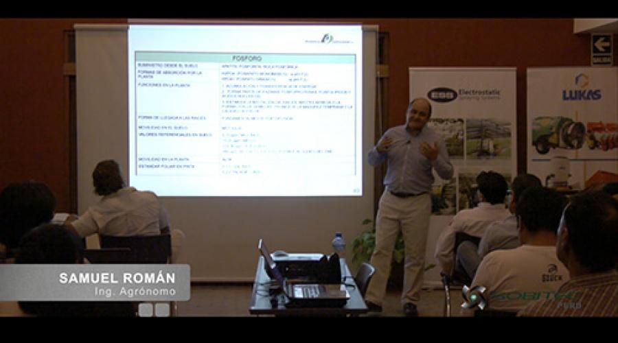 Importancia del fosforo (P) en la producción de uva de mesa de calidad