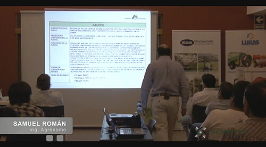 Importancia del azufre (S) en la producción de uva de mesa de calidad