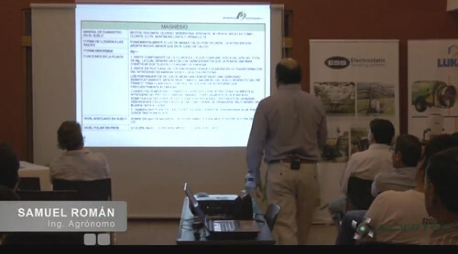 Importancia del magnesio (Mg) en la producción de uva de mesa de calidad