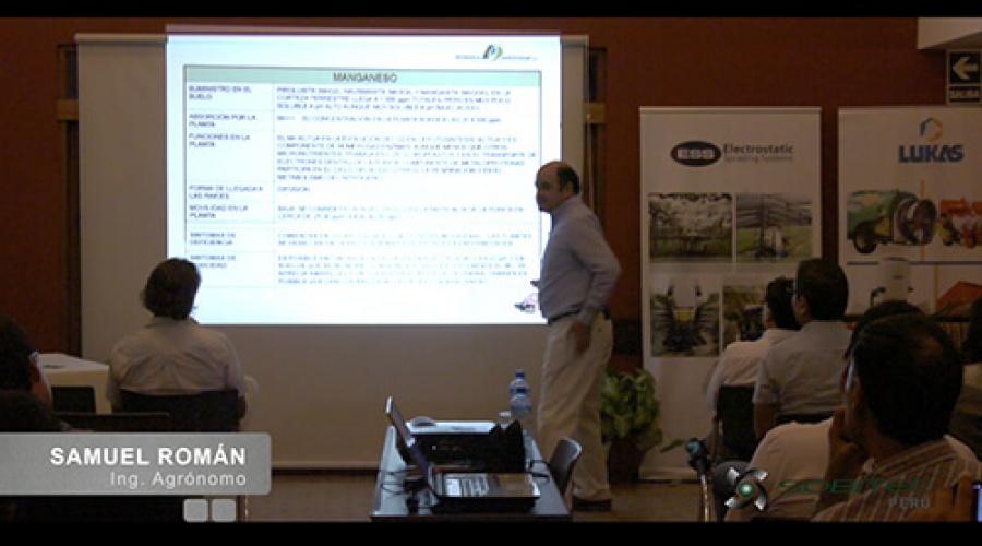 Importancia del Manganeso (Mn) en la producción de uva de mesa de calidad