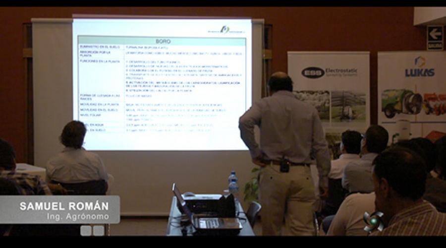 Importancia del Boro (Bo) en la producción de uva de mesa de calidad
