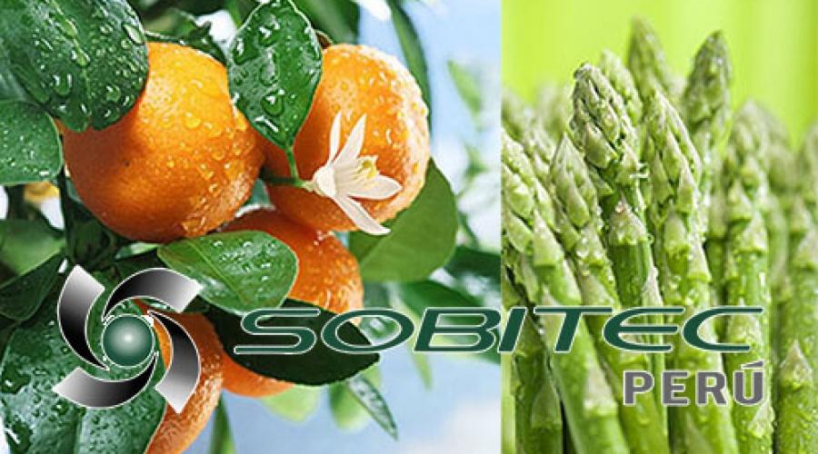 ¿Que son los aminoácidos para uso en agricultura?